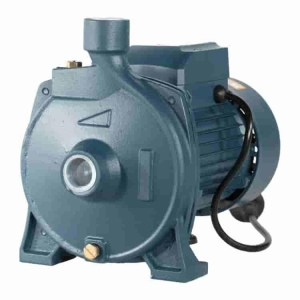Escaping Outdoors CPM180 centrifugal water pump - Water Pumps Now